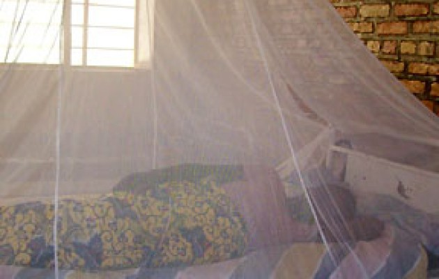 Counting Malaria Out in Rwanda for Pregnant Women and Young Children