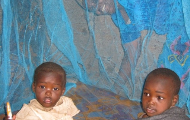 Specially-treated bed nets protect against malaria.