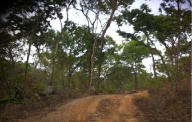 The road to Wampembe