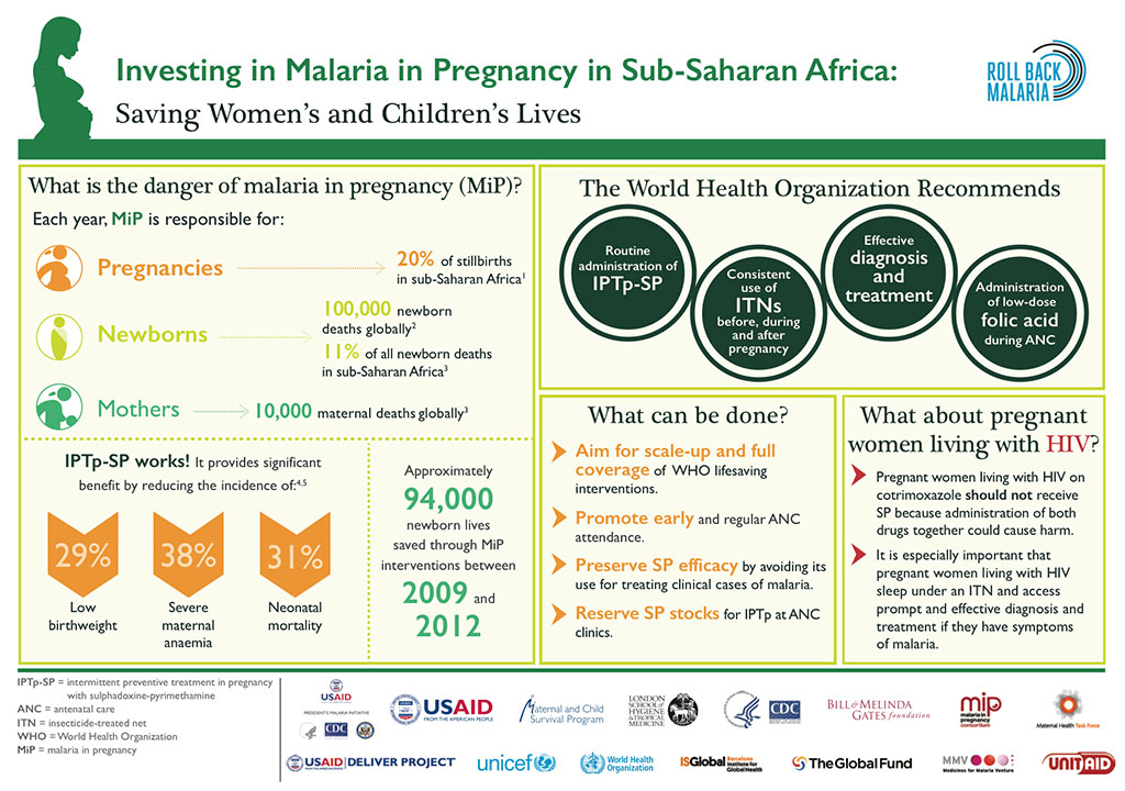 Investing in Malaria in Pregnancy in Sub-Saharan Africa
